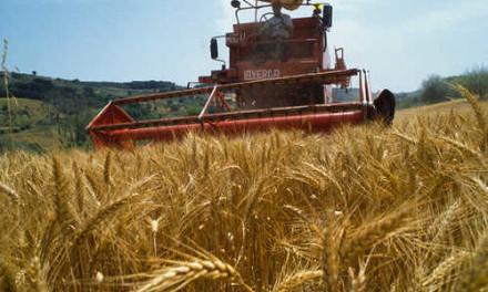 IMU AGRICOLA, OK DEL GOVERNO A MIA MOZIONE – si aggiornino dati per equità fiscale