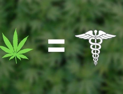 Cannabis terapeutica, diritto alla salute negato