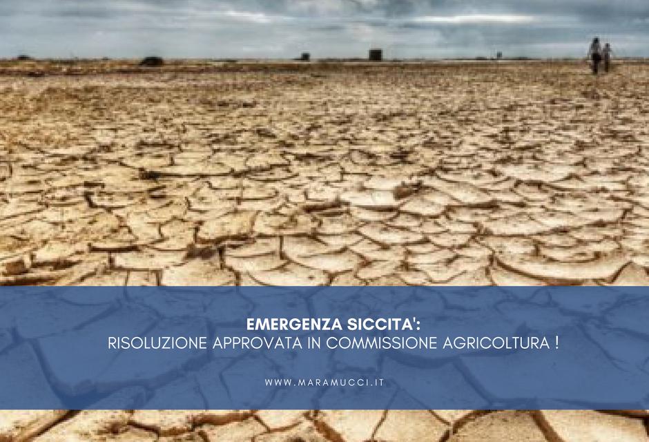 Emergenza siccità: risoluzione approvata in Commissione Agricoltura!